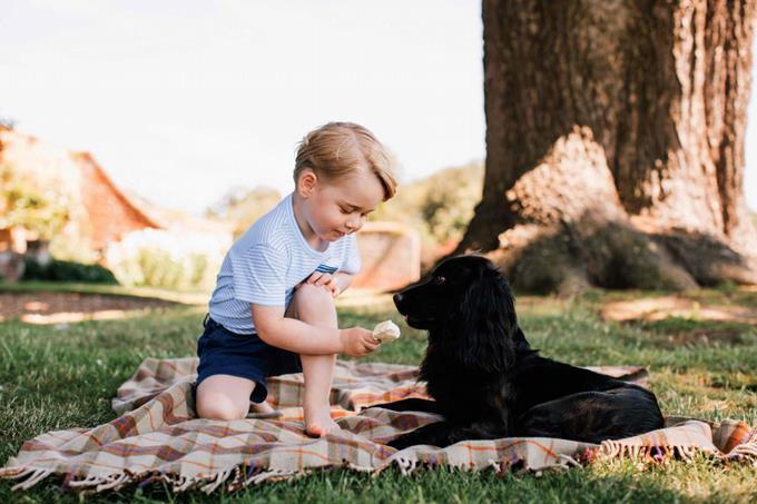 principe jorge tres años